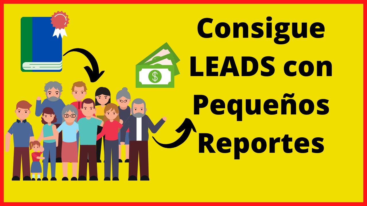 leads con reportes